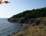 Spiaggia della pineta di Licosa