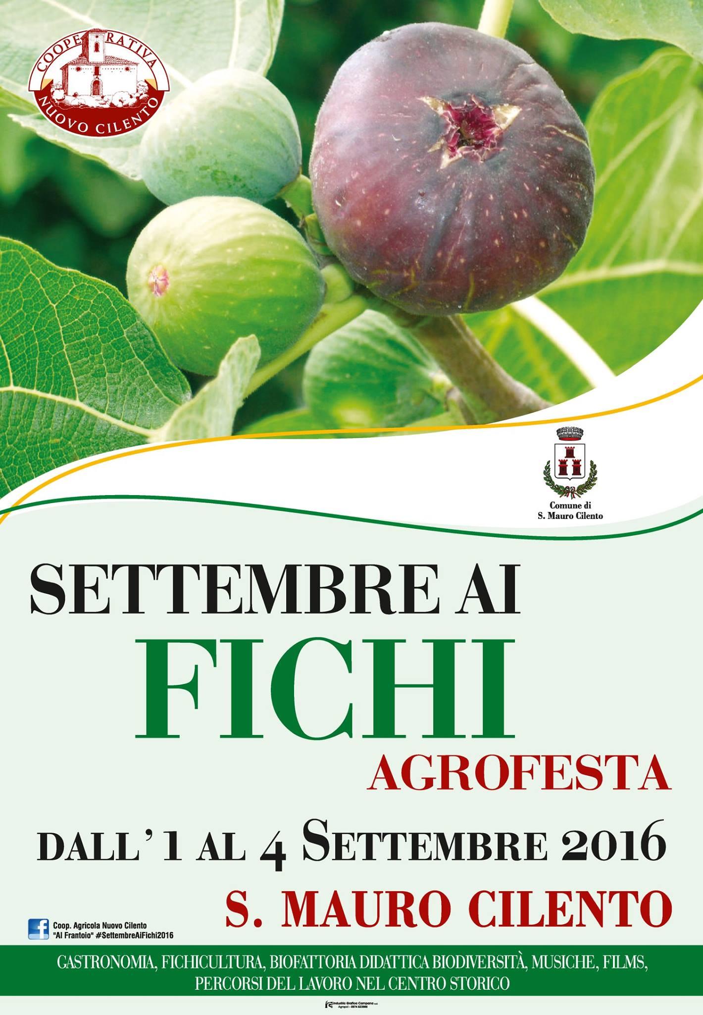 San Mauro Cilento agrofesta settembre ai fichi